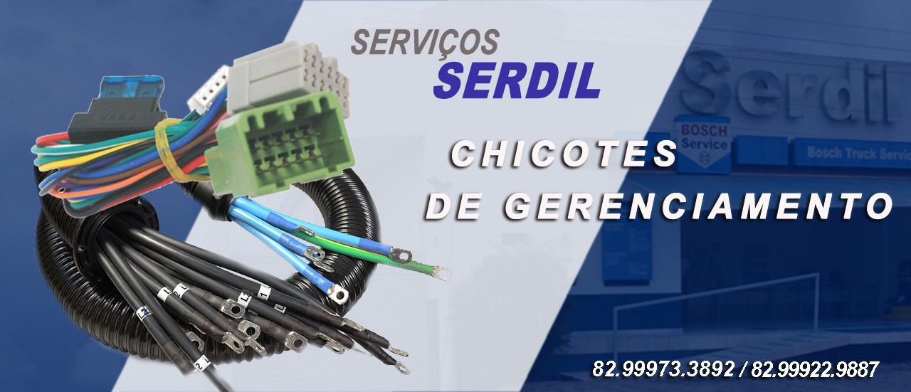 CHICOTE DE GERENCIAMENTO