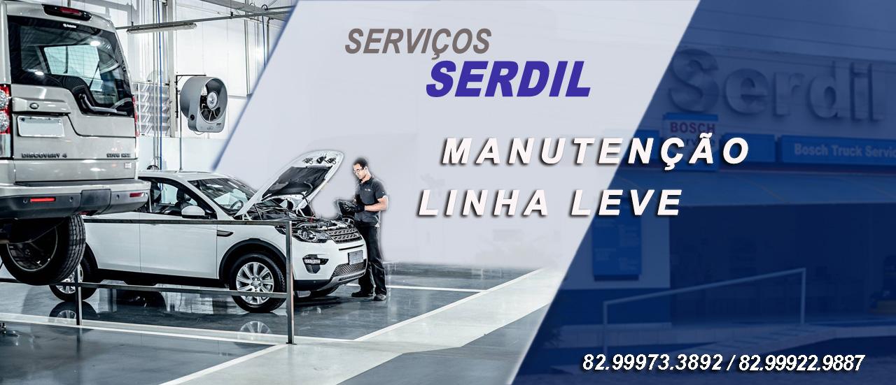 SERVIÇOS MANUTENÇÃO LINHA LEVE